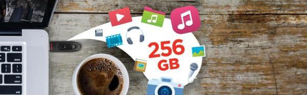 Sandisk Ultra 256Go - clé USB3