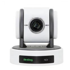 BirdDog Eyes P100B (blanche) - caméra PTZ Full NDI avec SDI