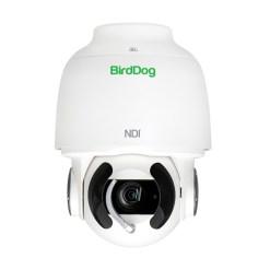 BirdDog Eyes A200 - caméra PTZ