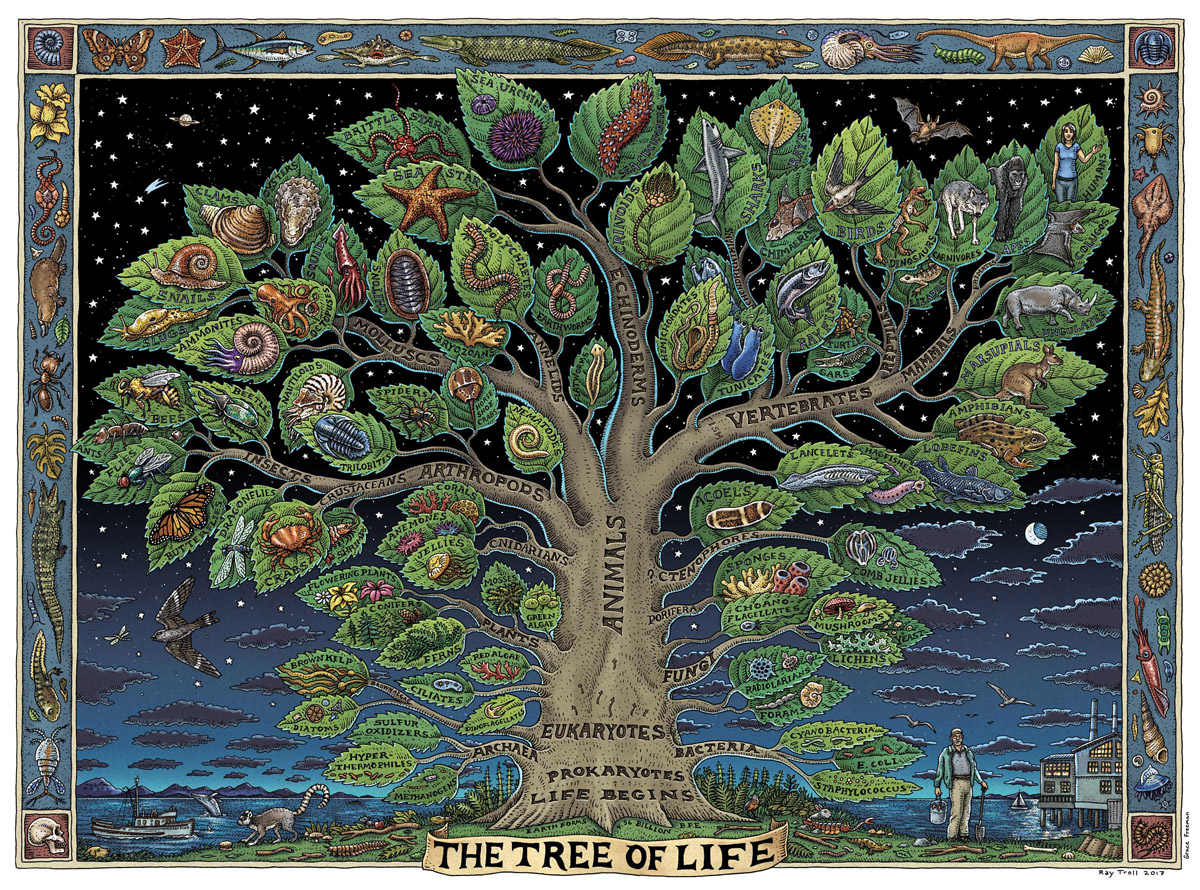 Tree Of Life Art Poster