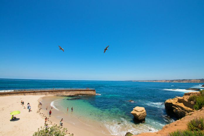 The Best Beaches in San Diego To Visit | San Diego Beaches