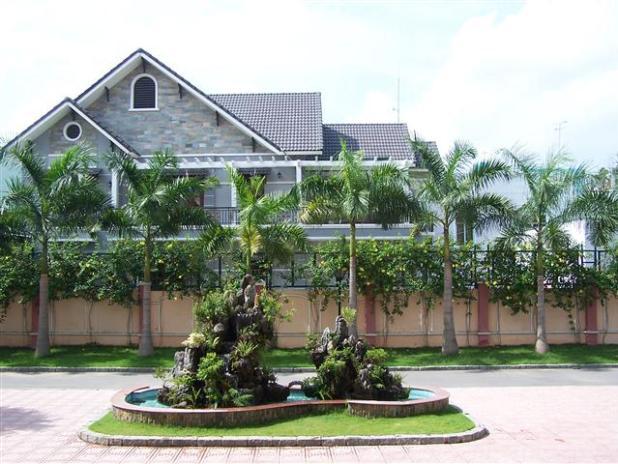 cây cảnh ngày nay,nhà xây theo lối kiến trúc hiện đại, dậu bông bụt xưa giờ là tường rào với loài cây leo hoa vàng rực rỡ