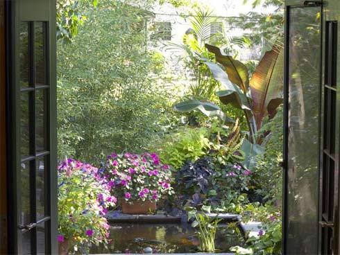 Mở cửa sổ nhìn ra vườn, bạn sẽ thấy tâm hồn mình thật dịu mát bởi vẻ đẹp đầy màu sắc của thiên nhiên trước mắt