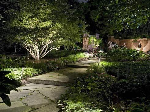 Con đường quanh co dẫn vào nhà rợp mát với cây cảnh và ánh sáng điện lung linh