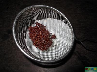 ủ hạt giống rau