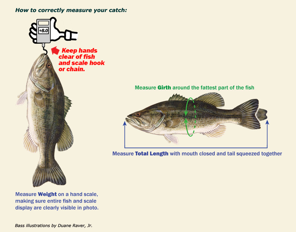 hight resolution of  sponsor published newspaper or magazine website with official results including your name and verified weight of the individual fish along with the