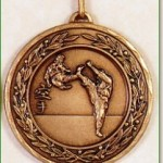 Martial Arts Medal - 50mm
