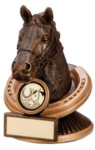 Resin Equestrian Trophies in Antique Gold Coloured Finish