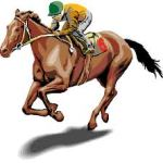 Horse (7)