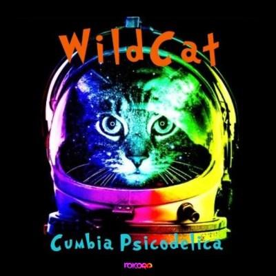 folcore_048_wildcat_cumbia_psicodelica_469612b333c93f3a66a1dfdf54655224