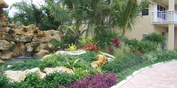 tropical landscape solutions