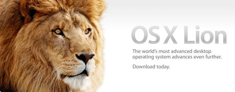 Lion: First Impressions
