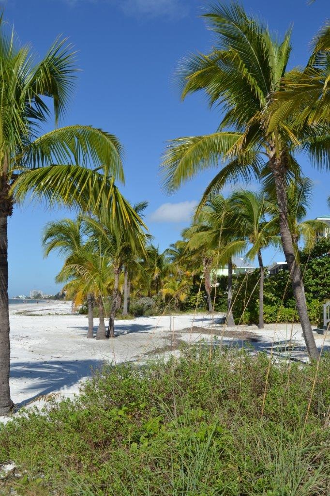 Fort Myers Beach  Tropical Wedding Planner