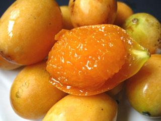 Mango Plum - Erik Mango