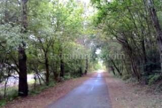 Vía verde hacia Moliets