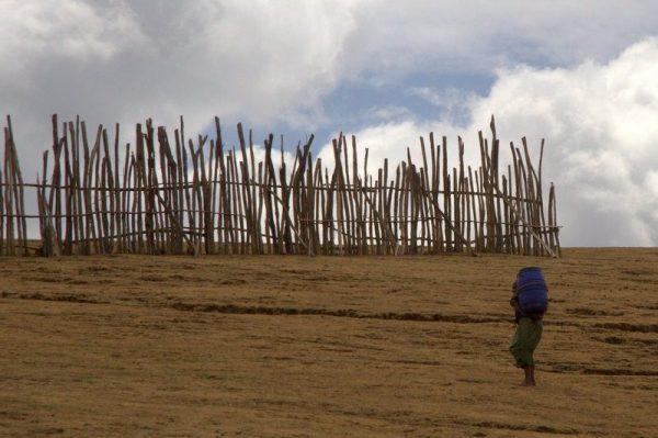 MUJER ACARREANDO UN BIDÓN EN EL PARQUE NACIONAL SIMIEN MOUNTAINS