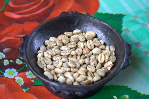 GRANOS DE CAFÉ SIN TOSTAR