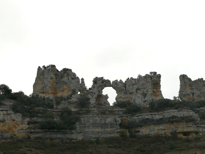 CAMELLOS EN ORBANEJA DEL CASTILLO