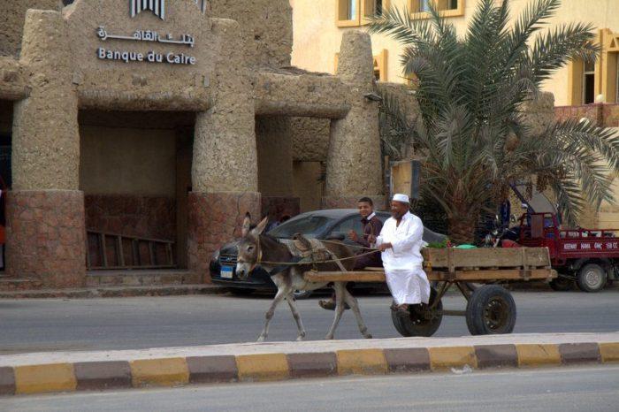 BANCO DEL CAIRO EN SIWA