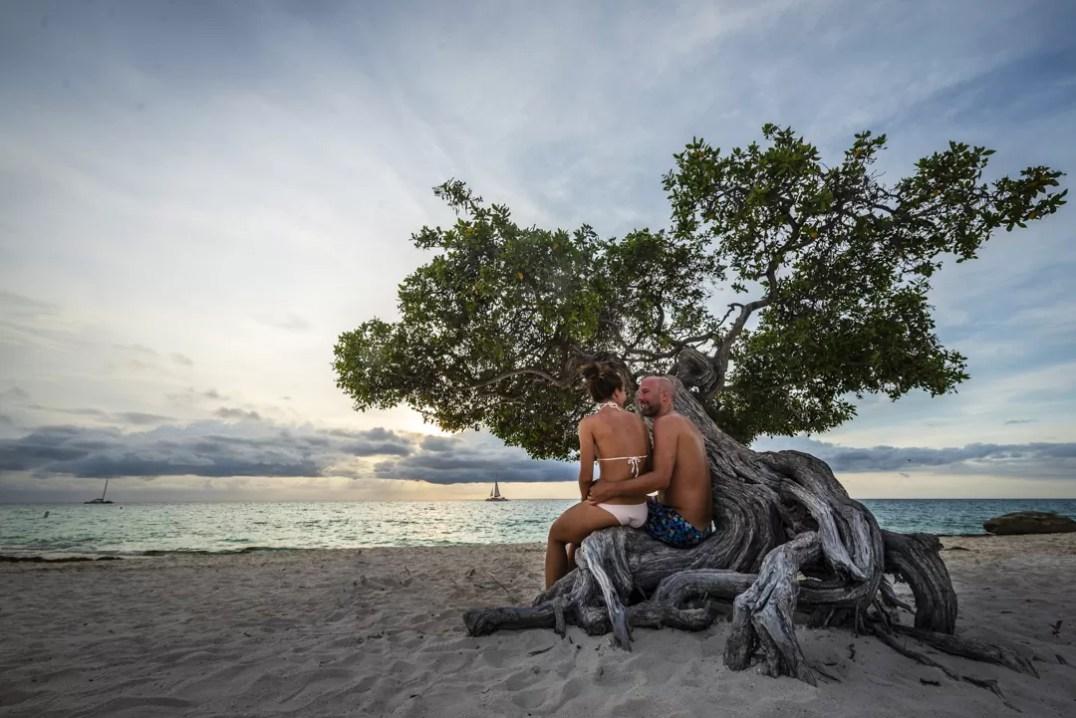 Koppel bij famous tree Eagle Beach Aruba