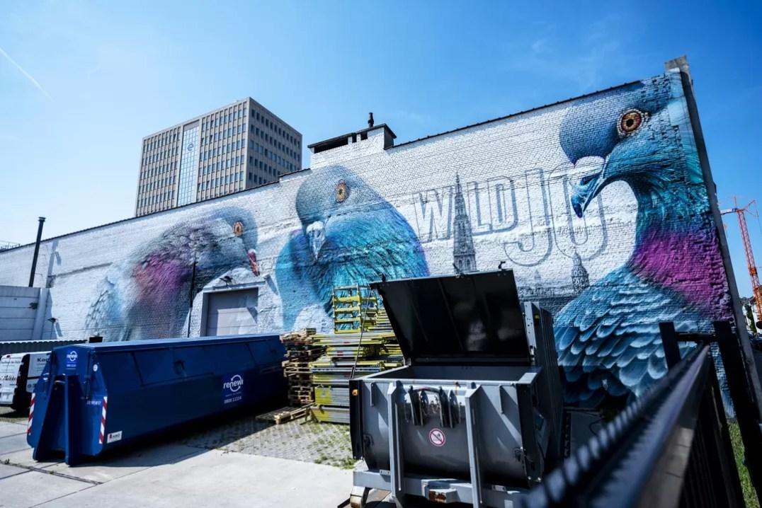 Street Art in Antwerpen - Hello Pigeons by Super-A