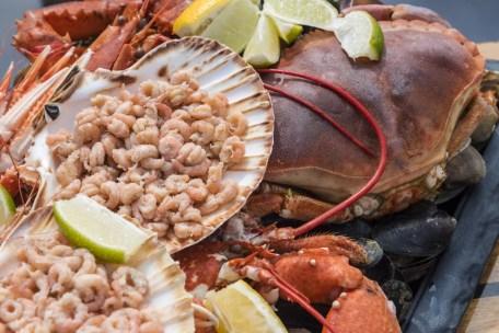 Waddeneilanden Terschelling - Iselmar seafood