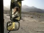 spiegel moggy