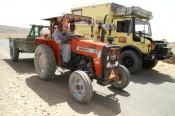 Tractor met moggy