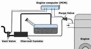 P0443 – Evaporative emission (EVAP) canister purge valve