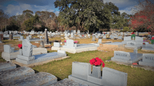 Early on Christmas morning I stand beside Mother's grave in the Greenwood Cemetery of Jennings.