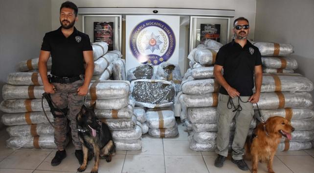 Muğlada 1,5 ton uyuşturucu madde ele geçirildi