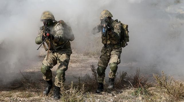 PKK/YPGye kasımda ağır darbe: 86 terörist etkisiz hale getirildi