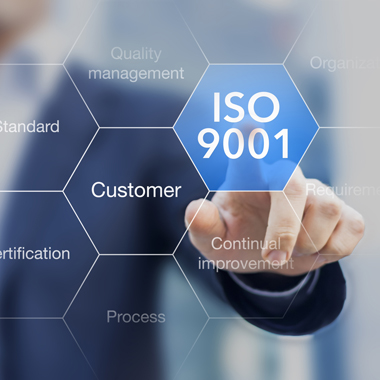 ISO 9001 standard for quality management of organizations with an auditor or manager in background