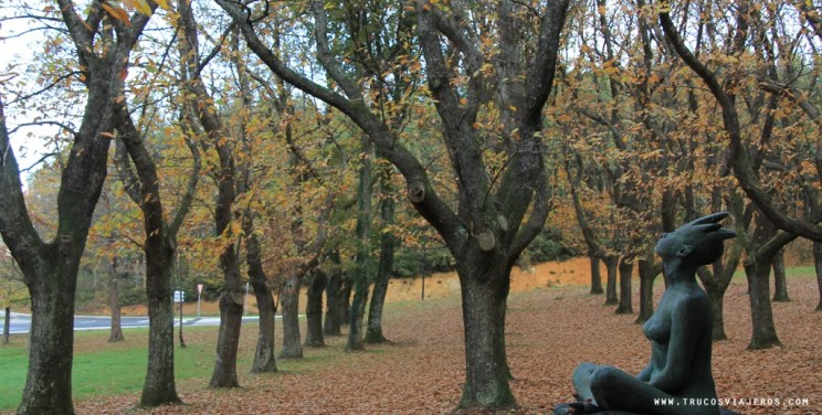 Art chestnut trees Galicia Carballeira Lalín - trucosviajeros