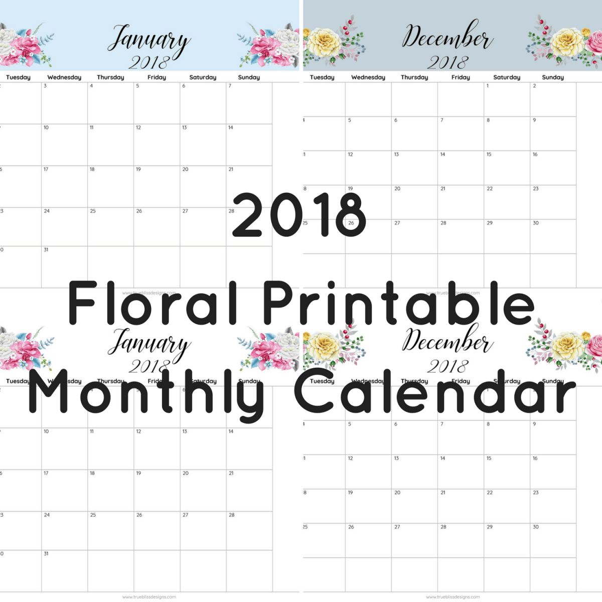 2018 Floral Printable Monthly Calendar
