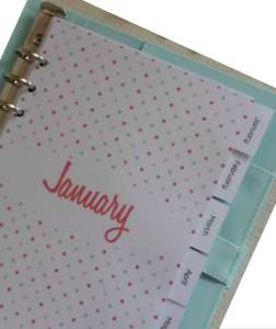 Download your free printable monthly planner dividers with tabs now! The dividers are designed for A5 planners and are designed to fit an A5 filofax or planner such as Kikki K and can be used year after year. These cute dividers have a colourful polka dots design and would be a beautiful addition to any planner. For more freebies, visit www.trueblissdesigns.com.