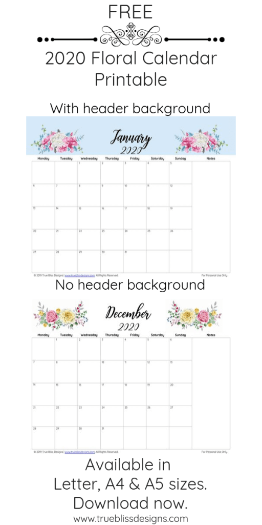 Download a free 2020 floral calendar today! Filled with lots of beautiful illustrated watercolor flowers, each month has a different design, is landscape and has space for notes. It\'s available in Letter, A4 and A5 size so whether you intend to use it in a planner or binder, there is a size to fit your needs. For more freebies, visit www.trueblissdesigns.com.