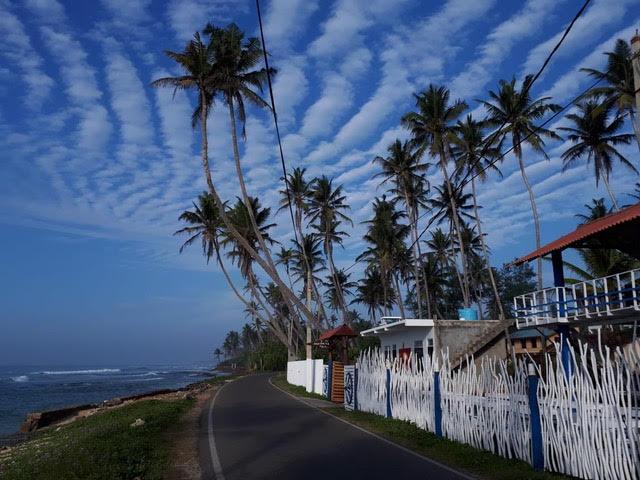 trueblue_srilanka review feature image