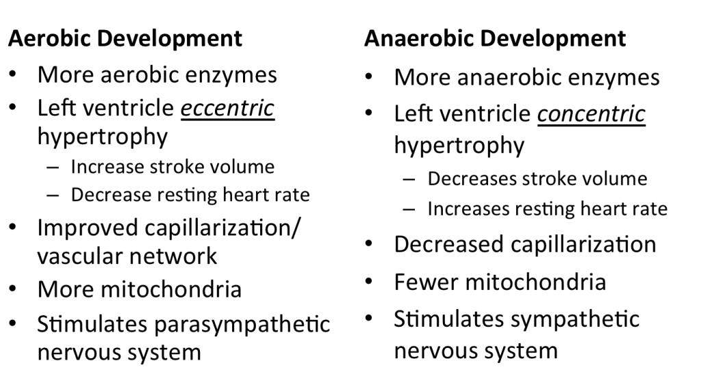Aerobic vs Anaerobic 2