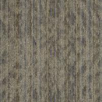 Shaw Amaze Daze Carpet Tile 54588 - Discount Pricing | DWF ...