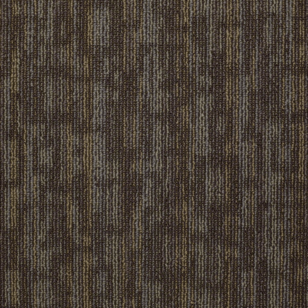 Shaw Hook Up Charged Carpet Tile 24 x 24 5449191791