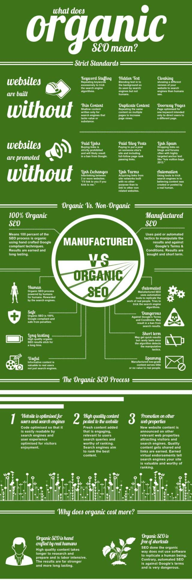 what does organic seo mean infographics