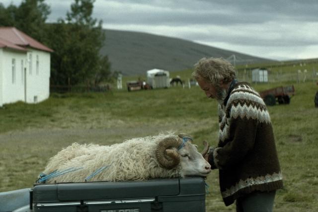 羊男的冰島冒險 --【觸電網】電影情報一網打盡!