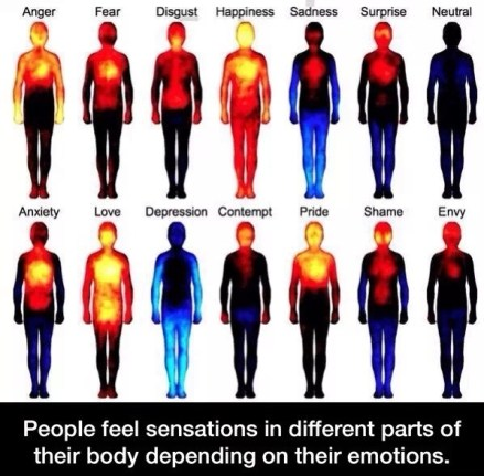 How-Your-Body-Reacts-To-Your-Emotions