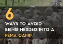 6 Ways to Avoid Being Herded into a FEMA Camp