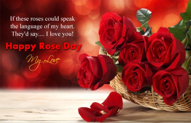 I Love You Rose Day Pics - 7th Feb Happy Rose Day Images with Shayari