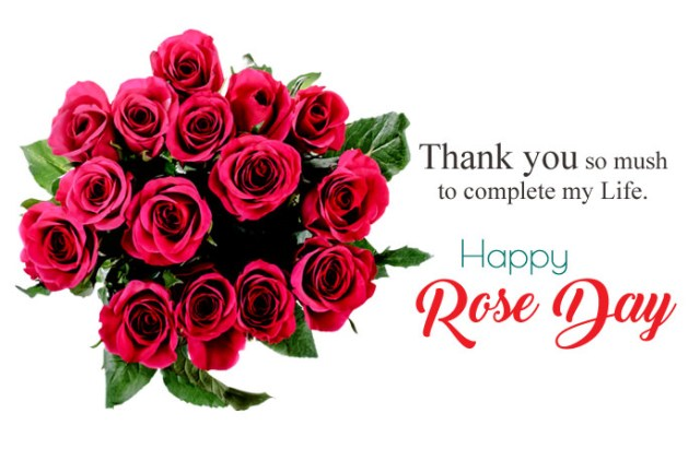 Rose Day Love Images - 7th Feb Happy Rose Day Images with Shayari
