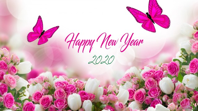 Happy New Year 2K20 HD Images with Pink Roses and Butterfly - Happy New Year 2020 Wallpaper, HD Greetings