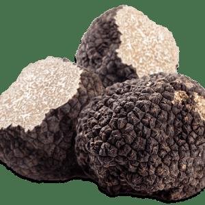 Black Truffles by Truffle Guys