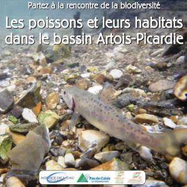 Les poissons et leurs habitats dans le bassin Artois-Picardie.